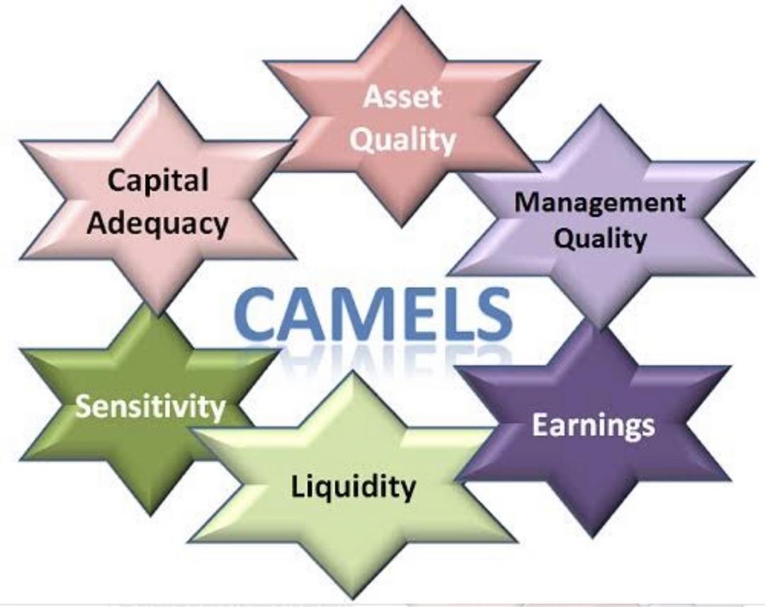 Modelo de CAMELS para avaliação do Conselho