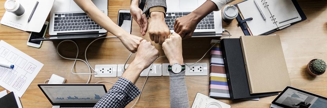"""Gonew lança """"Partner Lab - Programa de Mentoria para Sócios"""""""